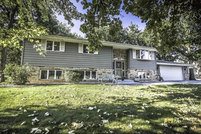 3820 Amber Court, Plainfield, IL 60586 - #: 10085456