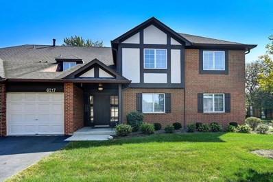 6217 Canterbury Lane UNIT C, Willowbrook, IL 60527 - #: 10086326