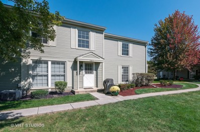 1100 Bunker Hill Court UNIT C, Wheaton, IL 60189 - #: 10086403