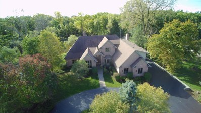 26541 N Pond Shore Drive, Wauconda, IL 60084 - #: 10086457