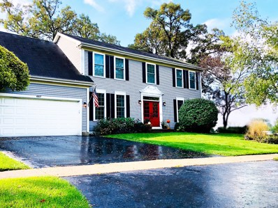 467 Galway Drive, Cary, IL 60013 - MLS#: 10086814