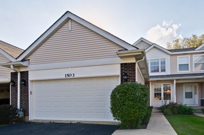 1503 Ashley Court UNIT 0, Woodstock, IL 60098 - #: 10087335