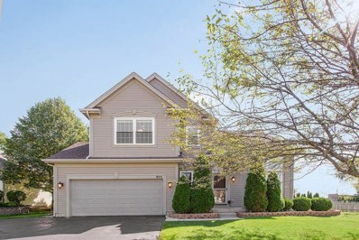 855 Columbine Drive, Elgin, IL 60124 - MLS#: 10087381