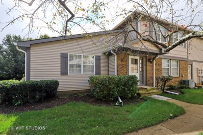 25 Tanwood Court, Vernon Hills, IL 60061 - MLS#: 10087898