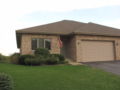 30907 Correct Craft Lane, Wilmington, IL 60481 - MLS#: 10088559