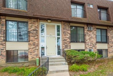 163 N Waters Edge Drive UNIT 102, Glendale Heights, IL 60139 - #: 10088903