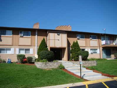 880 E Old Willow Road UNIT 285, Prospect Heights, IL 60070 - #: 10089940