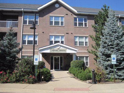 10 N Gilbert Street UNIT 203, South Elgin, IL 60177 - #: 10090030