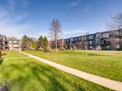 9413 Bay Colony Drive UNIT 2S, Des Plaines, IL 60016 - #: 10090280