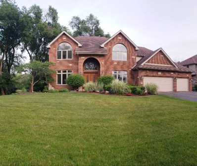 7431 W Pennington Lane, Monee, IL 60449 - #: 10090607