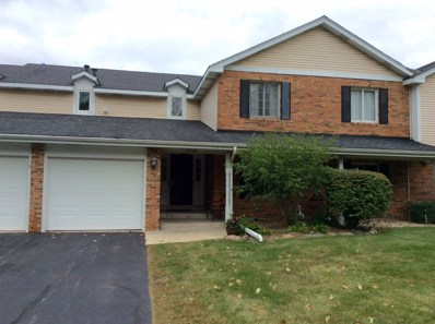7260 S Adams Street UNIT B, Willowbrook, IL 60527 - #: 10091309