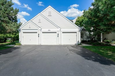 2911 Bartlett Court UNIT 203, Naperville, IL 60564 - MLS#: 10091469
