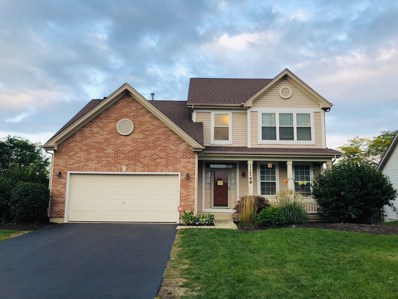 11740 S Decathalon Lane, Plainfield, IL 60585 - #: 10092265