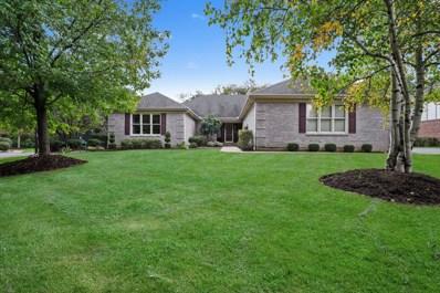 21205 W Creekside Drive, Kildeer, IL 60047 - MLS#: 10092421