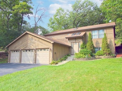 1180 Deerpath Court, Fox Lake, IL 60020 - #: 10092854