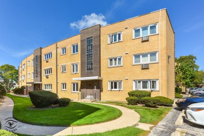 10312 S Pulaski Road UNIT 101A, Oak Lawn, IL 60453 - #: 10092932