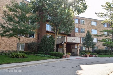 245 S Park Lane UNIT 418, Palatine, IL 60074 - MLS#: 10092955