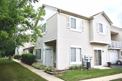 57 Braxton Lane UNIT 105C, Aurora, IL 60504 - #: 10093160