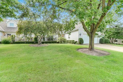 9 Penny Lane, Sugar Grove, IL 60554 - #: 10093328