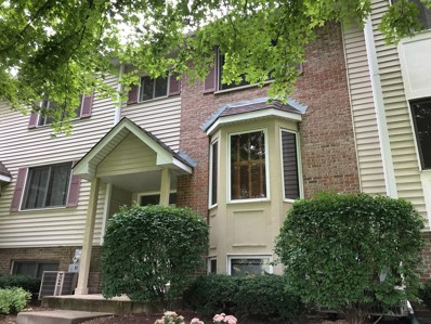 417 E Willow Street UNIT 417, Elburn, IL 60119 - MLS#: 10093526