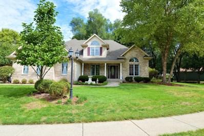 22853 S Anna Drive, Channahon, IL 60410 - #: 10095053