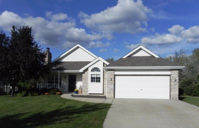 25635 S Middle Point Avenue, Monee, IL 60449 - MLS#: 10095233