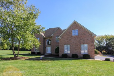 8 Steeplechase Drive, Hawthorn Woods, IL 60047 - #: 10095452