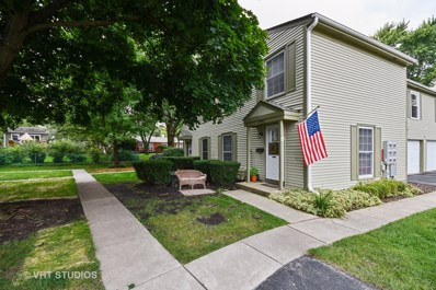 1150 Mt Vernon Court UNIT E, Wheaton, IL 60189 - #: 10095585