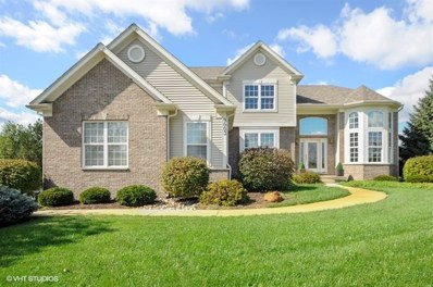 9003 Deborah Lane, Spring Grove, IL 60081 - #: 10096128