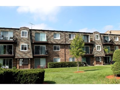 9408 Bay Colony Drive UNIT 2N, Des Plaines, IL 60016 - MLS#: 10096374