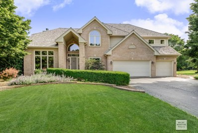 40 Oak Creek Drive, Yorkville, IL 60560 - MLS#: 10096416
