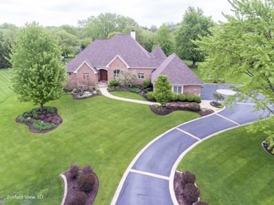 20045 N Deer Chase Court, Deer Park, IL 60010 - #: 10097385