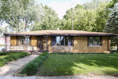 221 S Joliet Street, Wilmington, IL 60481 - MLS#: 10097508