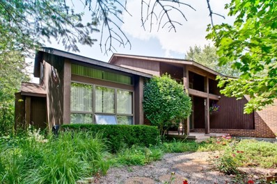 28510 N Rocky Top Road, Libertyville, IL 60048 - #: 10097557