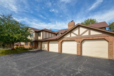 7652 W Golf Drive UNIT 1A, Palos Heights, IL 60463 - #: 10097597