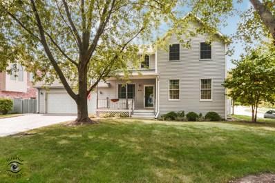 419 N Cedar Road, New Lenox, IL 60451 - #: 10097639