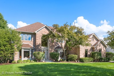 4416 Clearwater Lane, Naperville, IL 60564 - #: 10098016