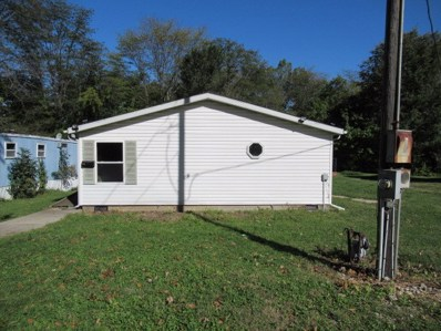 613 E Dodge Street, Farmer City, IL 61842 - #: 10098227