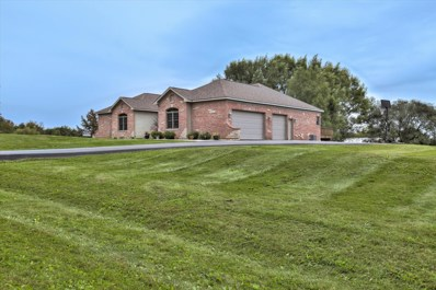 4600 Smith Court, Woodstock, IL 60098 - #: 10098290