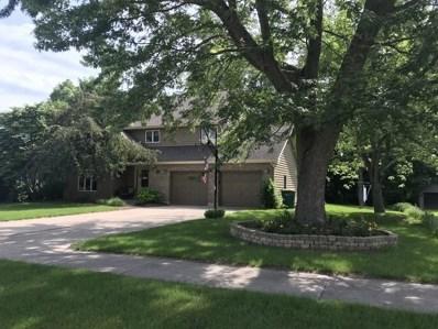 751 Kristin Lane, Wilmington, IL 60481 - #: 10098548
