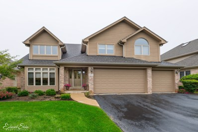9211 Loch Glen Drive, Lakewood, IL 60014 - MLS#: 10098590