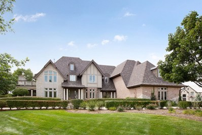 218 Shadow Ridge Court, Palos Park, IL 60464 - #: 10098611