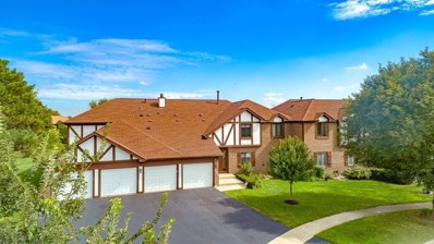 880 Cross Creek Court UNIT AA4, Roselle, IL 60172 - #: 10098651