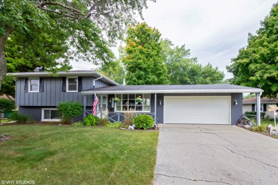 15228 S Indian Boundary Line Road, Plainfield, IL 60544 - MLS#: 10098826