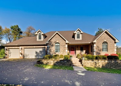 6771 W Creekside Drive, Long Grove, IL 60047 - MLS#: 10099114