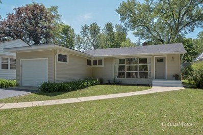 602 High Street, Geneva, IL 60134 - #: 10099244