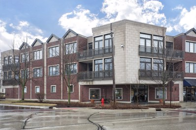 578 Roger Williams Avenue UNIT 204, Highland Park, IL 60035 - #: 10099380