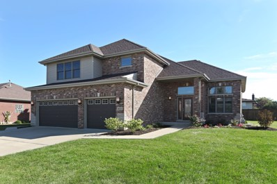 14111 Churchill Drive, Homer Glen, IL 60491 - MLS#: 10099417