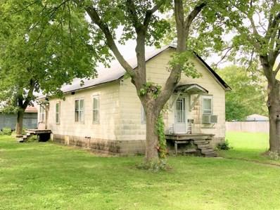 118 S Van Horn Street, Braceville, IL 60407 - #: 10099621