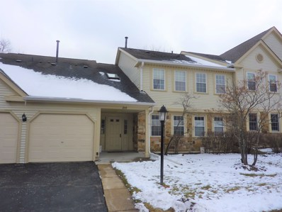 200 Dublin Lane UNIT X-2, Schaumburg, IL 60194 - MLS#: 10100004